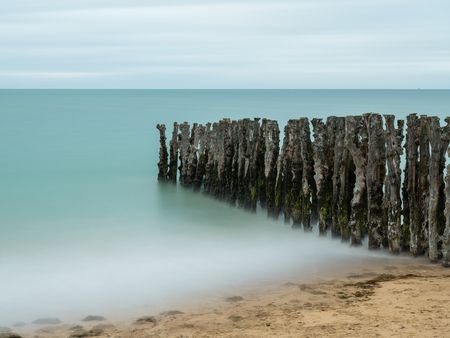 Old weathered tree trunks on the beach of Saint Malo (France), long exposure in the evening, high tide