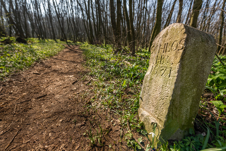 Old milestone (year 1671) near a path through a deciduous forest on a sunny day in early spring (Hainburg, Austria)
