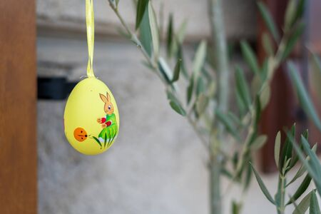 yellow easter egg hanging on an olive tree branch