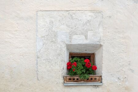 Red flowers in front of a small window of a very old house in South Tyrol, Italy