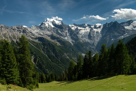 Panorama of the Ortler Alps near Stelvo Pass (South Tyrol, Italy) on a sunny day in summer Фото со стока