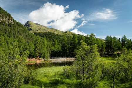 Small pond in Martell valley (Sout Tyrol, Italy) on a sunny day in summer