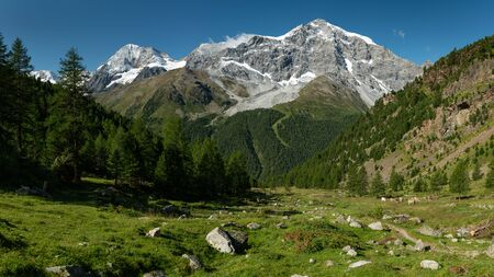 The Ortler Alps near Sulden (South Tyrol, Italy) on a sunny day in summer (Ortler, Koenigspitze, Gran Zebru)