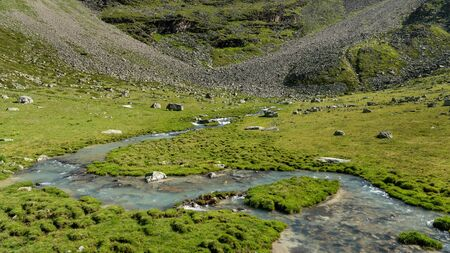 Small river in the Ortler alps (South Tyrol, Italy) on a sunny day in summer