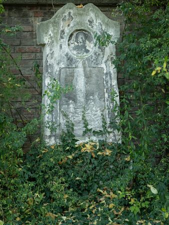 An old gravestone in St. Marx Cemetery (Vienna, Austria) in autumn, colored leaves