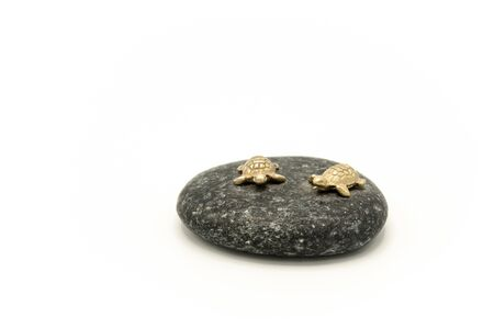 Closeup of two small sea turtles made of gold sitting on a black stone, isolated on a white background