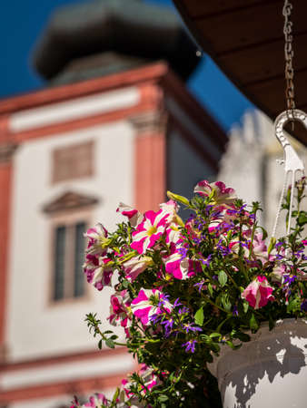 Flowers in front of Basilica of the Birth of the Virgin Mary in Mariazell (Austria) Reklamní fotografie