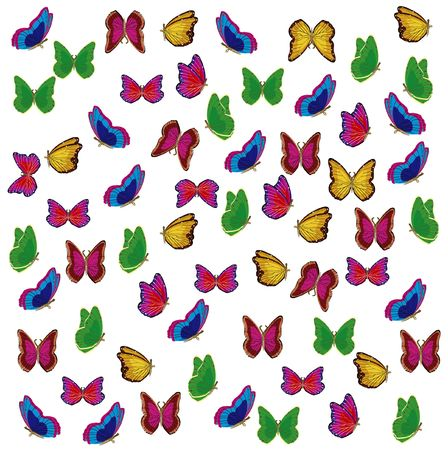 varicoloured: Much varicoloured insects butterfly