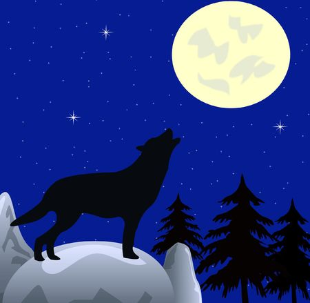 Wolf on in the night wails on moon photo