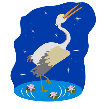 flowerses: Bird stork on water in the night