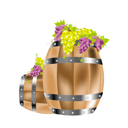 tare: Wooden barrel and grape of the miscellaneous sort on her Illustration