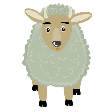 animal ram: Animal ram on white background