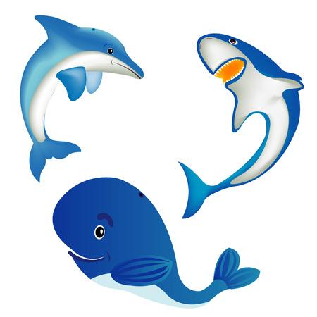 海の動物クジラ、サメ、イルカ