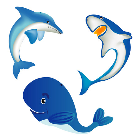 Sea animals whale,shark and dolphin Vector