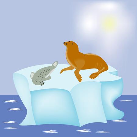 Sea animals seal on block of ice in north sea Illustration