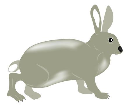 Illustration of the rabbit on white background Stock Vector - 8615655