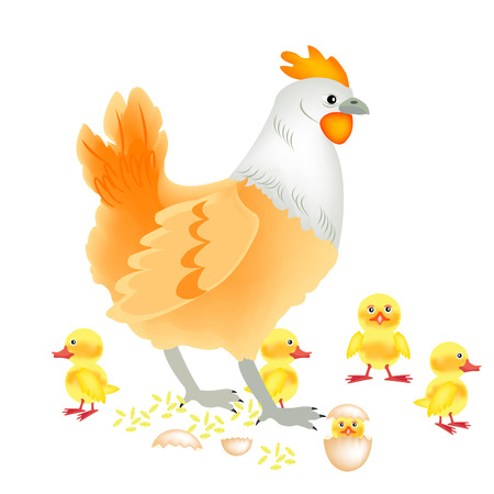 Hen with newborn nestling on white background Stock Vector - 8615658