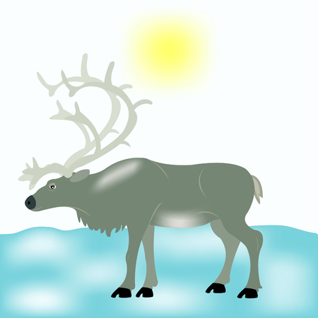 tundra: Reindeer in snow tundra Illustration