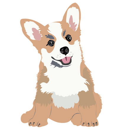 shaggy dog: Illustration small puppy sheep dogs on white background
