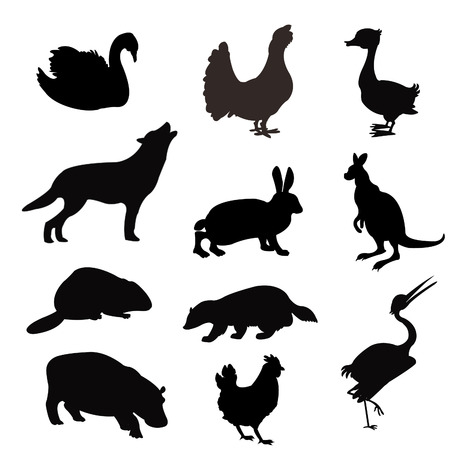 Black silhouettes of the beasts and birds on white background Ilustrace