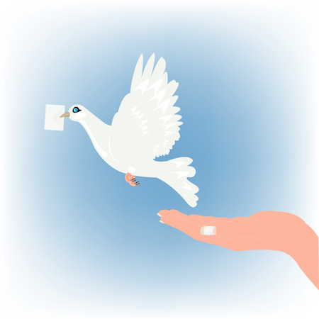 Dove with letter and feminine hand Vector
