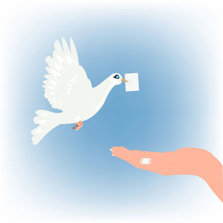 White dove with letter and stretching feminine hand Vector