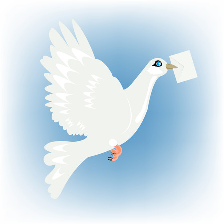 Flying dove with postal envelope in beak