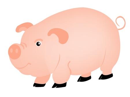 Animal pig on white background Stock Vector - 9184078