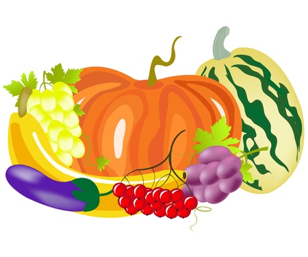 Fruits and vegetables on white background Vector