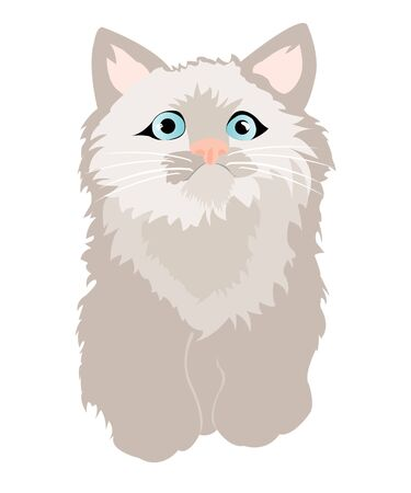 Small gray kitty with blue eye Stock Vector - 9395707