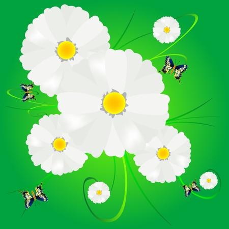 flowerses: Flower daisywheel and butterflies on green background
