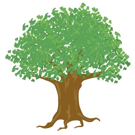 白い背景の上の大きな木