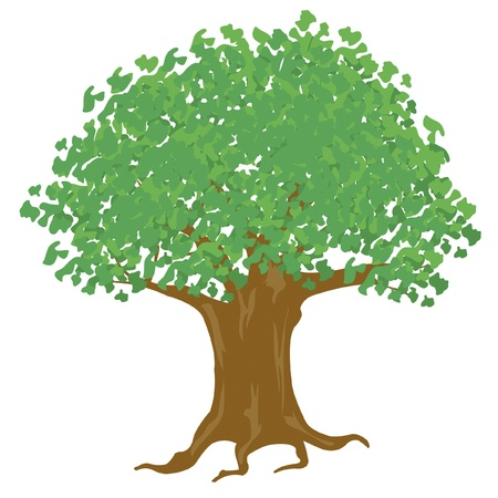 Big tree on white background