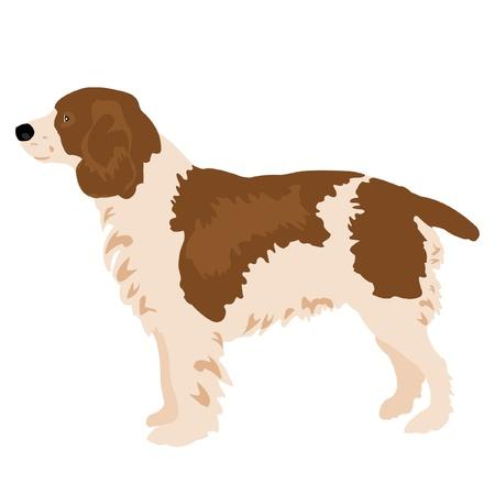 白い背景の上犬のイラスト