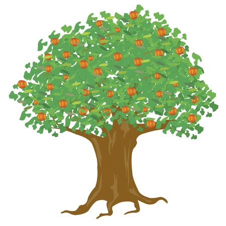 pommier arbre: Arbre avec apple ripe Illustration