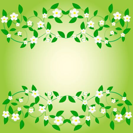 flowerses: Background from white flower and sheet Illustration