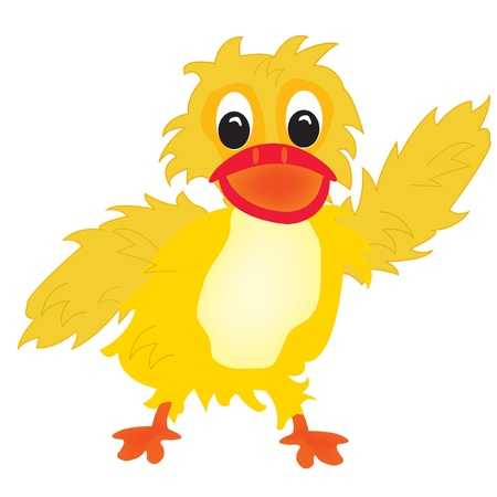 ducklings: Illustration nice duckling on white background