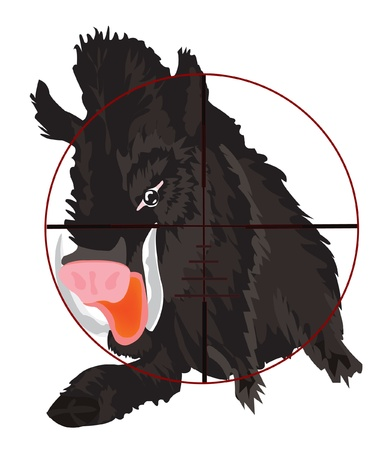 Vector illustration of the wild boar in optical sight Vector