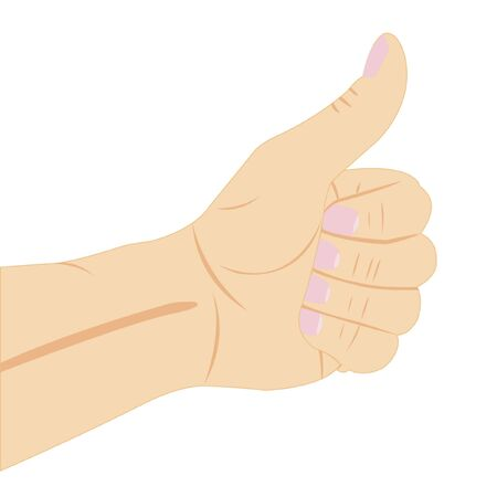 Vector illustration of the hand on white background