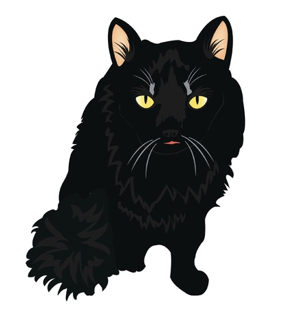 Drawing of the black cat on white background