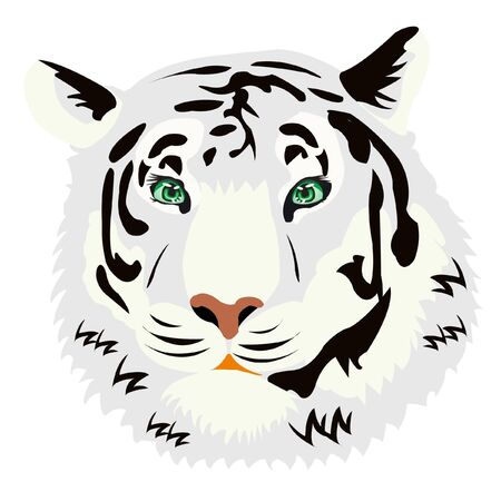 Illustration of the tiger on white background is insulated Vector