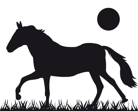 Vector silhouette of the horse going on herb Vector