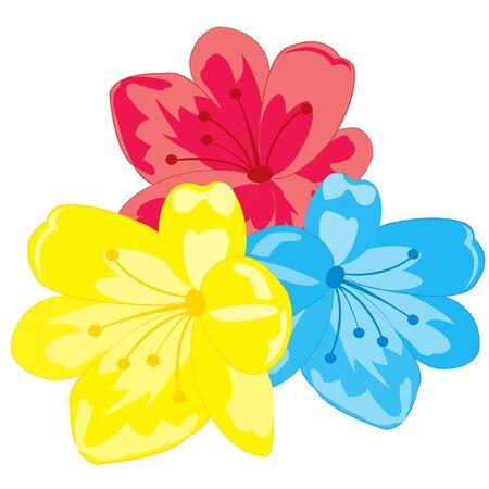 flowerses: Illustration three flowers on white background