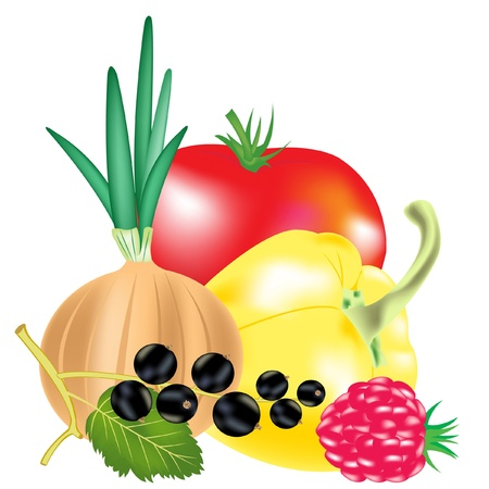 Illustration fruit and berries on white background Stock Vector - 13446872