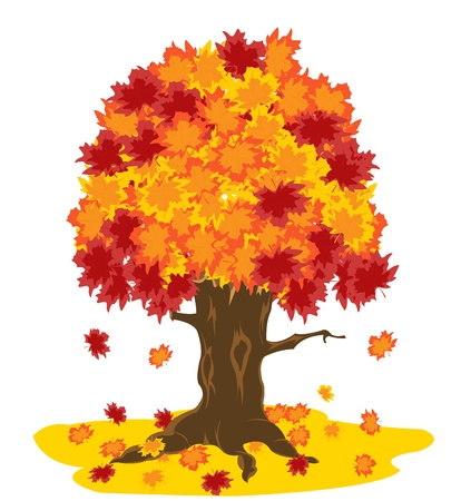 白い背景の上の秋のシートを持つツリー