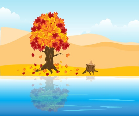 The Autumn landscape.Tree is reflected in clean water Stock Vector - 16131419