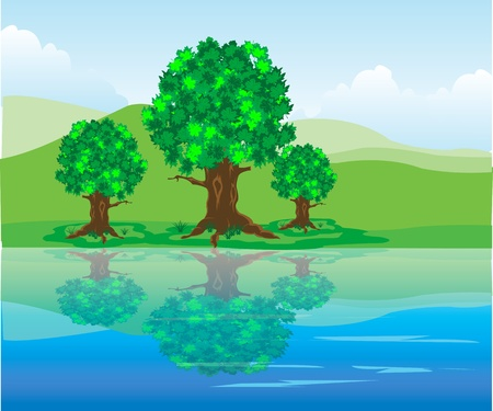 The Year landscape.Tree are reflected in clean water Stock Vector - 16131420