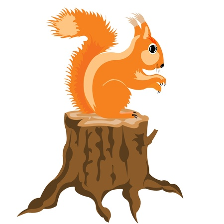 stumps: Illustration of the squirrel on white background is insulated Illustration