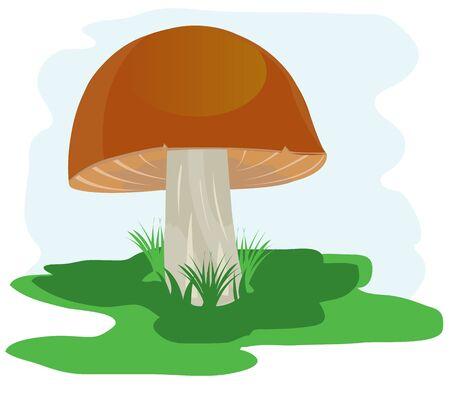 glade: Illustration of the mushroom on green glade