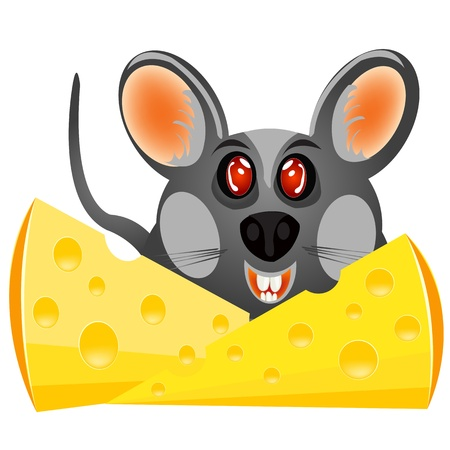 Illustration sulphur baby mouse with cheese on white background Vector